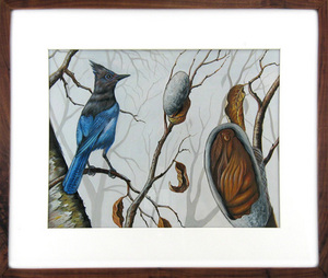 Stellar Jay & Cocoon, Fred Smith