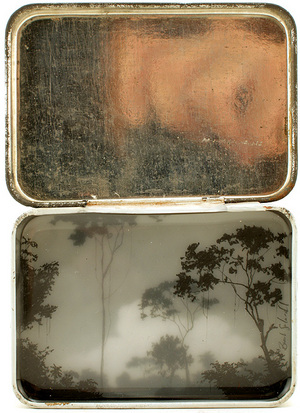 High Forest Tin , Brooks Salzwedel