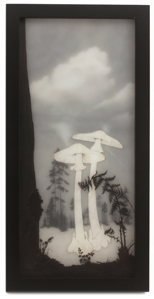 Destroying Angel, Brooks Salzwedel