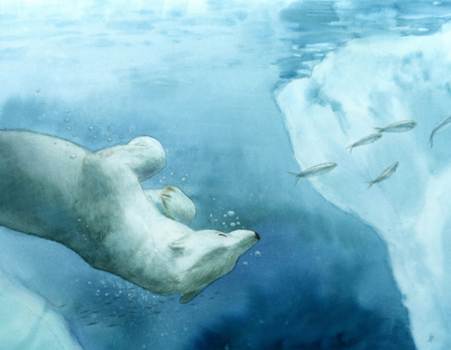 Polar Swim, Jen  Betton
