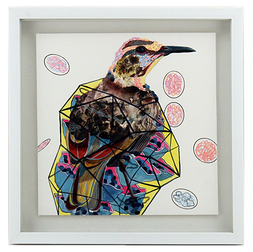 Endangered Bird #01, Juan Travieso