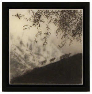 Four Elks, Brooks Salzwedel