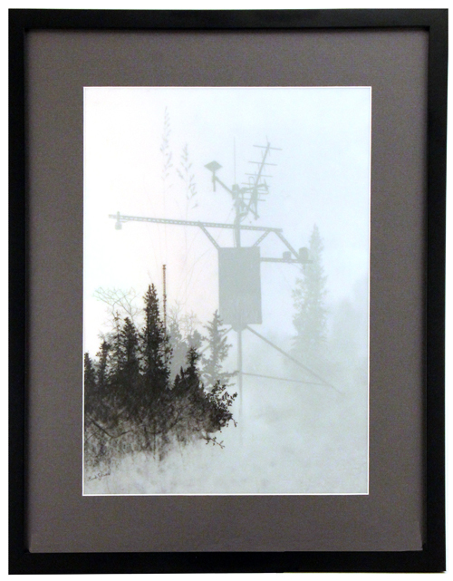 Weather Data & Giant Weeds, Brooks Salzwedel