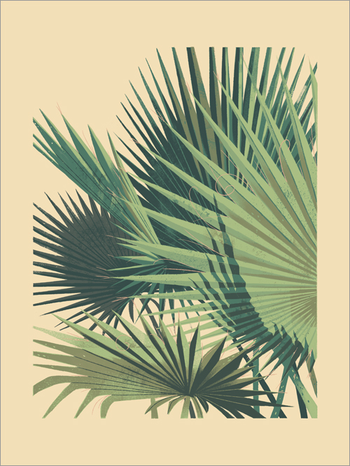 Palm Plant 2 Large Format, Chris Turnham