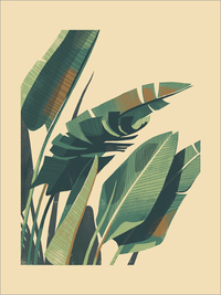 Palm Plant 1 Large Format, Chris Turnham