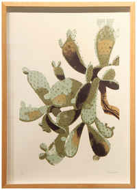 Prickly Pear Cactus, Chris Turnham