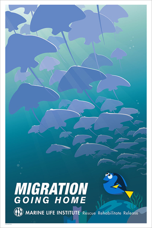 Migration: Going Home, Alex Riegert-Waters