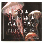 Art of Aqualumina x Gallery Nucleus (Zine)