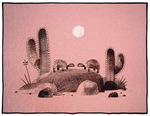 We Found A Hat Woven Blanket, Jon Klassen
