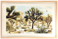 Joshua Tree Framed 1st Edition, Chris Turnham