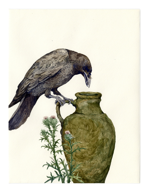 The Crow and the Pitcher, Lily Seika Jones