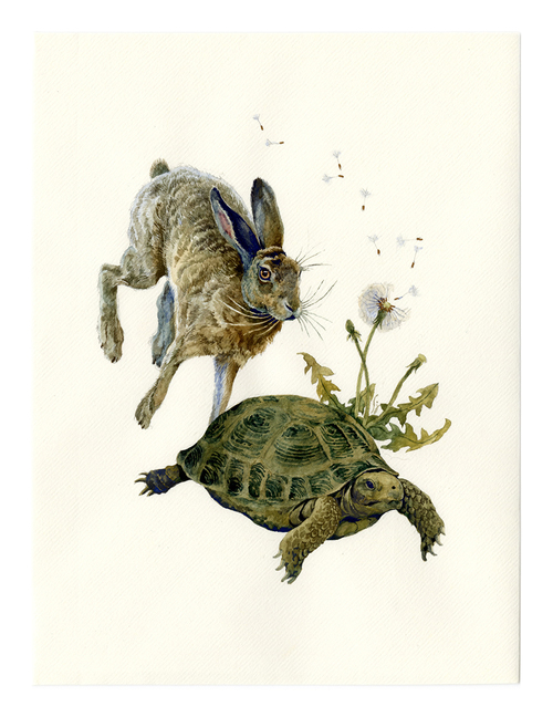 The Tortoise and the Hare, Lily Seika Jones