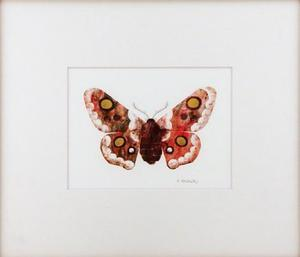 Butterfly (Matted Print), Chris Sasaki