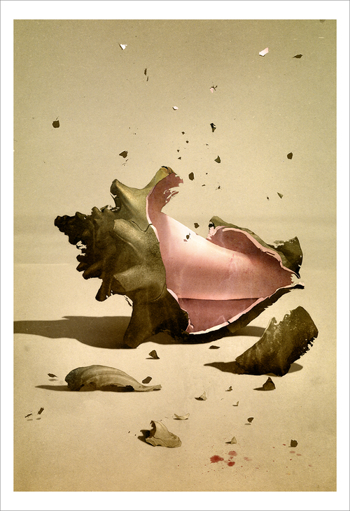 The Shattered Conch (print), Sam Weber