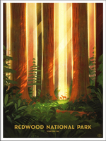 Redwood National Park (The Fifty-Nine Parks Print Series), Glenn Thomas