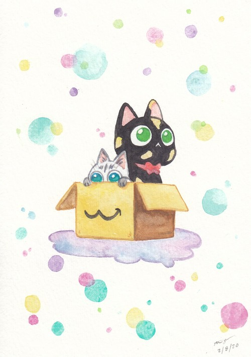 Kitties in a box, Alisa Ogura