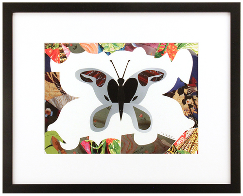 Butterfly 1, Teddy Newton